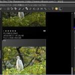 SILKYPIX Developer Studio Pro7 レビュー 残念な部分が目立つ国産RAW現像ソフト